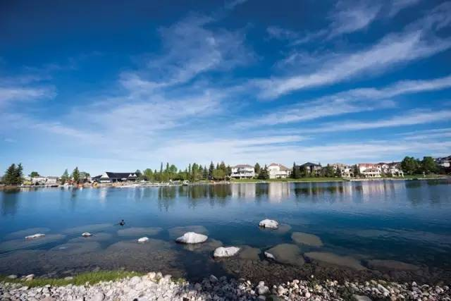 arbour-lake-1